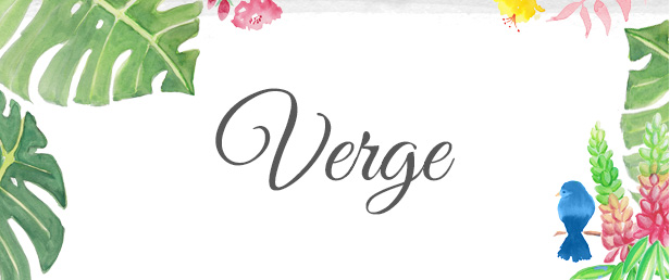 Verge Blog Title Graphic